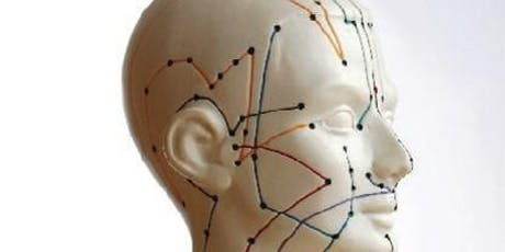 Scalp Acupuncture Theory tickets