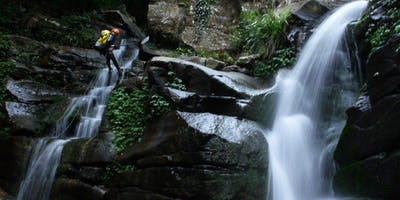 Women's Rainforest Canyon Adventure // Satruday 22nd February