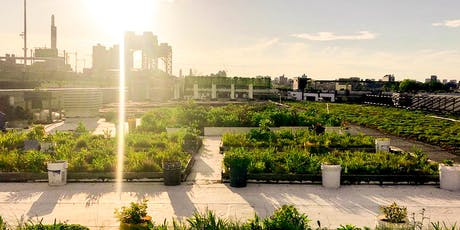 NYC Parks Department's Five Borough Building Green Roof Tour tickets