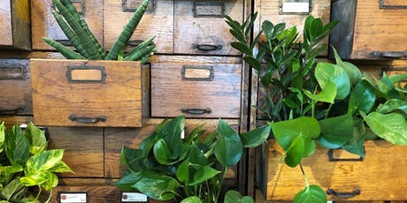 Houseplant 101 tickets