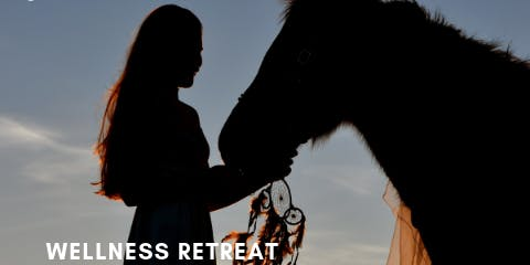 Wellness Retreat ~Horses as a Mirror~