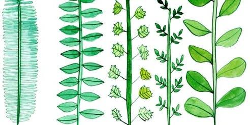 Painting Plants