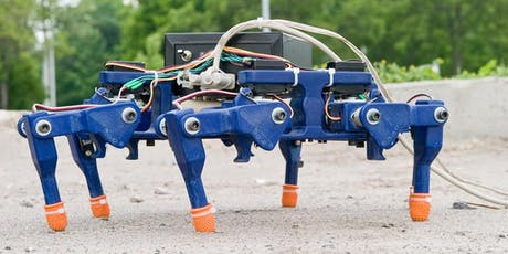 eDiscovery Vacation Camp: Build Your Own Hexapod tickets