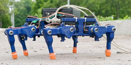 eDiscovery Vacation Camp: Build Your Own Hexapod