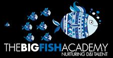 The Big Fish D&I Academy logo