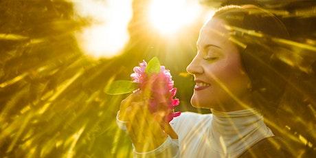 DREAMTIME Healing Retreat entradas
