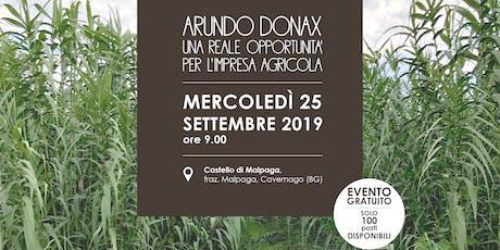 Arundo donax: una reale opportunità per l'impresa agricola biglietti