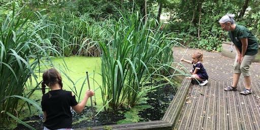 Home Education on the Heath: Habitats