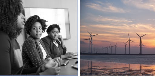 Innovation & Sustainable Development: Nordic African and Asian Women Entrepreneurs