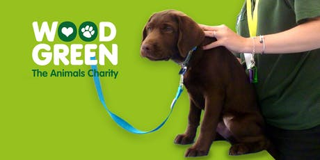 Pet Health & Wellbeing Check - Trinity Free Church tickets