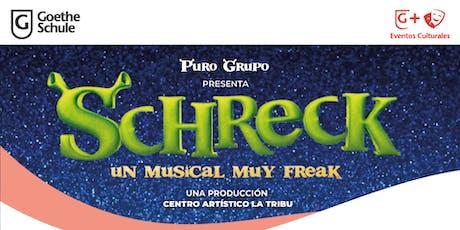 SCHRECK - UN MUSICAL BIEN FREAK entradas