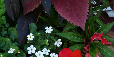 Brown-bag Gardening Series: Thrifty Landscaping tickets