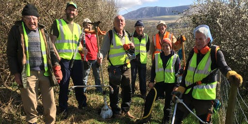 Leading a practical volunteer group - Porthkerry Country Park
