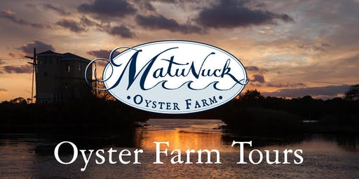 Matunuck Oyster Farm Sunset Tour
