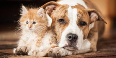 Animal Communication On-line Workshop - Learn to talk & listen to your pets!!! tickets