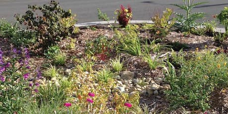 Rain Garden Workshop tickets