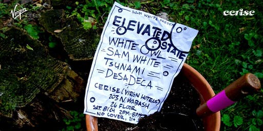 Elevated State feat. WHITE OWL, Sam White, Tsunami & Desadeca
