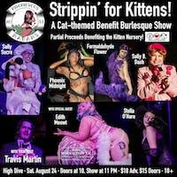 Strippin' for Kittens