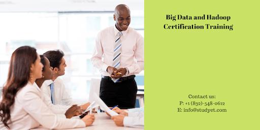 Big Data & Hadoop Developer Certification Training in Lexington, KY