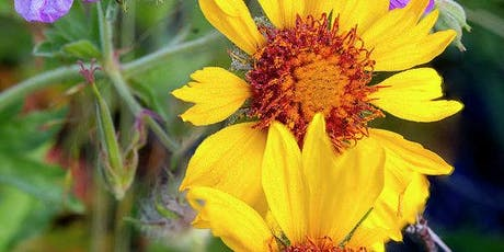 Wildflower Gardening tickets