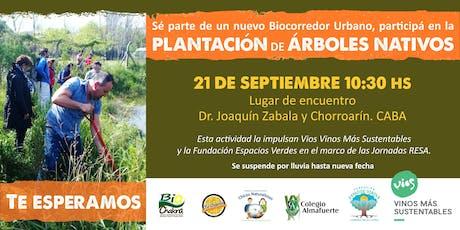 PLANTACIÓN DE ARBOLES NATIVOS - Jornada de Voluntariado Socioambiental - entradas