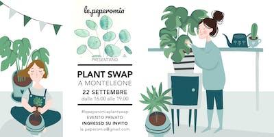 Plant Swap a Monteleone - Le Peperomia