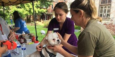 Healthy Pets Initiative: Free Vaccine & Microchip Clinic - Oasis Dog Spa & Shoppe