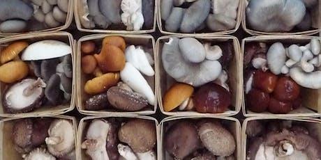 Mushroom Cultivation Basics - Morning Session tickets