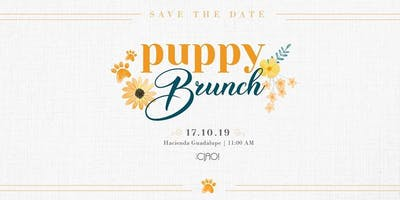 Puppy Brunch 2019