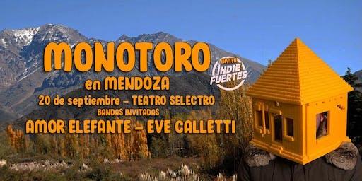 MONOTORO - AMOR ELEFANTE - EVE CALLETTI