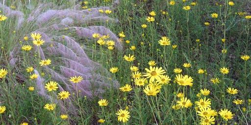 Botany Hike