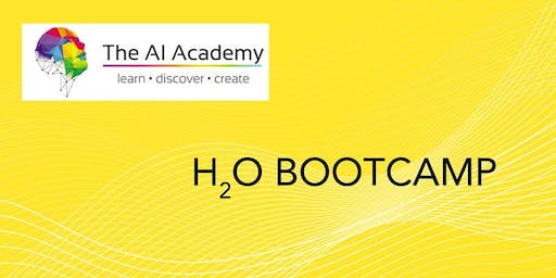 H2O Bootcamp SP - Machine Learning