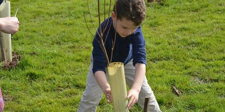 Plant A Tree Day in Colmar Manor, Maryland tickets