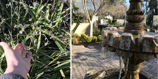 Saturday in the Gardens Series: Winterizing Your Landscape