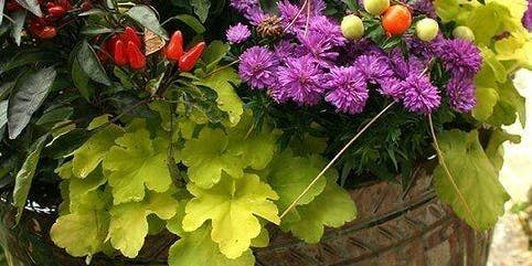 Fabulous Fall Planter