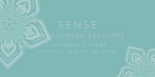 Sense - Mindfulness Sessions (11am)