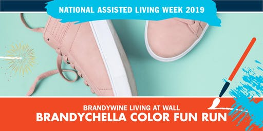 Brandychella Color Fun Run & Walk
