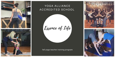 200 HOUR YOGA TEACHER TRAINING - CHICAGO  * yoga alliance certification * tickets