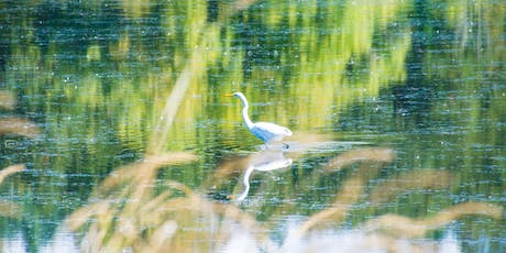 Hands-on Birding Photography at Carty Lake tickets