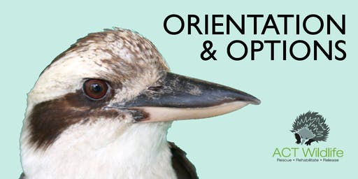 ORIENTATION - ACT Wildlife