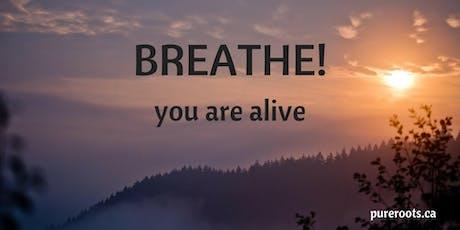 Mind-Body Breath Journey tickets