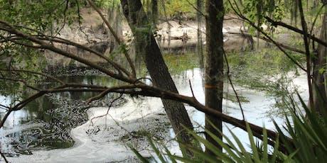 Holton Creek, Suwannee River Trail Maintenance_Dec. 2019 tickets