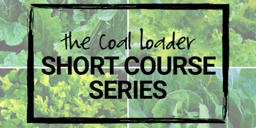 The Coal Loader Short Course Series- An Introduction to Permaculture