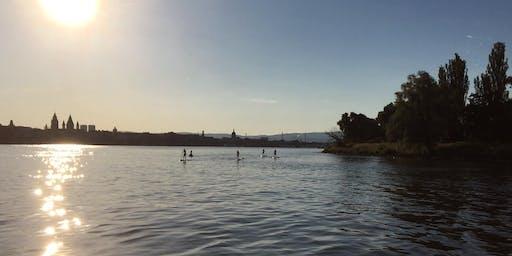 Wo der Main den Rhein trifft -  Flussbegegnungen -  Büffet an Bord