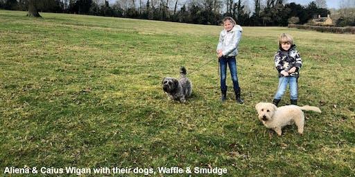 Sugarplum Sponsored Dog Walk 2020