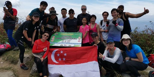 {Hiking Series} M'sia - Mount Ophir: Hiking step-up for beginner hikers!