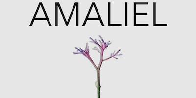 Amaliel at Headroom Festival