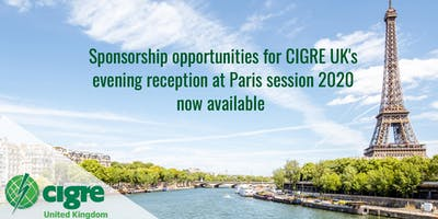CIGRE UK Reception - Paris Session 2020