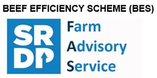 Beef Efficiency Scheme (BES) Event 29th October 2019 Thainstone Centre, Inverurie