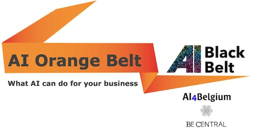 AI Orange Belt - Learn what AI can do for your Business